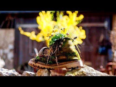 Красивые идеи для дачи и сада своими руками / Beautiful Ideas For The Garden / A - Video