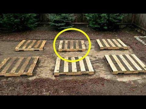 Все думали, зачем соседу столько деревянных поддонов? Но когда увидели зачем, были в шоке!