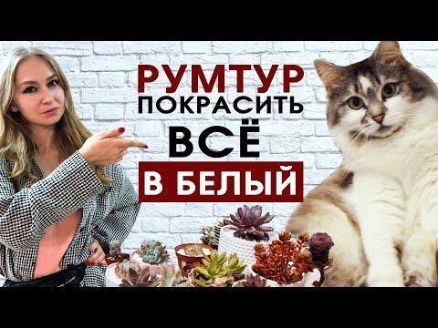 Румтур: Ремонт хрущевки своими руками — суккуленты, кошки и белые стены.